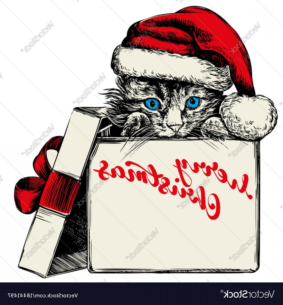 Stocking Hat Vector: Cute Christmas Kitten In Santa Stocking Hat Hand Drawn Vector