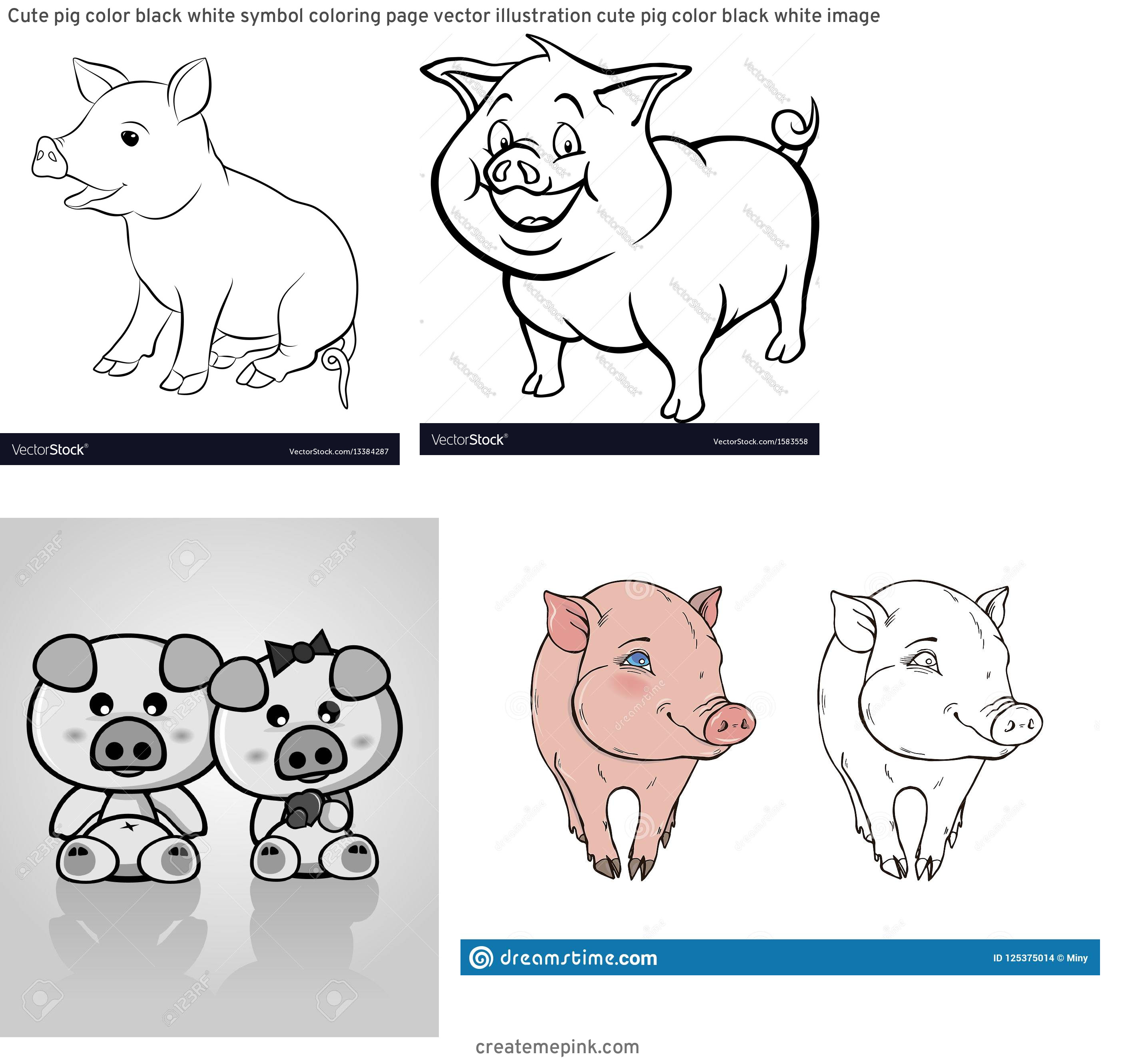 Cute Pig Vector Black And White: Cute Pig Color Black White Symbol Coloring Page Vector Illustration Cute Pig Color Black White Image