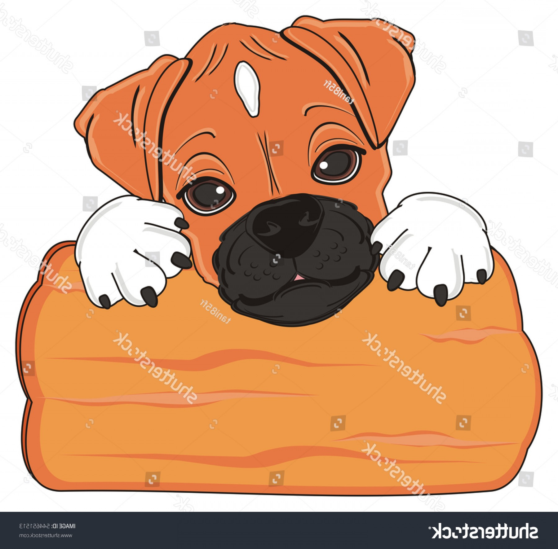 Double Boxer Dog Vector: Cute Snout Boxer Dog Peek Clean