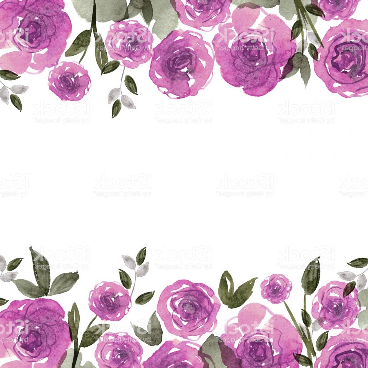 Watercolor Floral Background Vector: Cute Watercolor Flower Frame Background With Purple Roses Gm