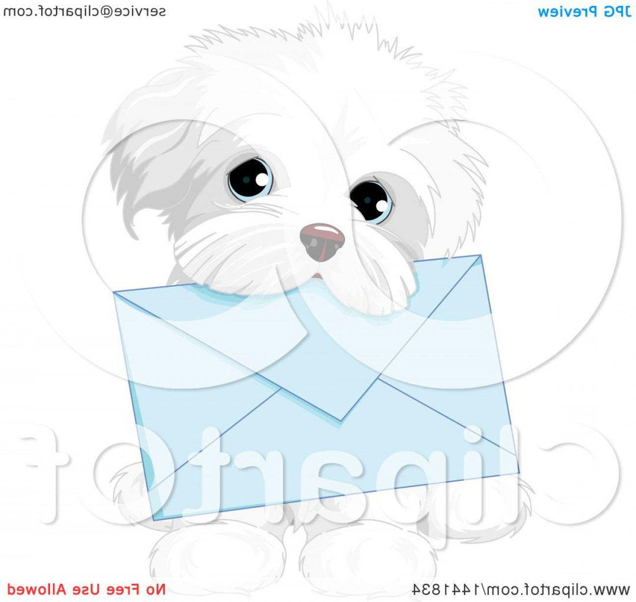 Shih Tzu Vector Siluete: Cute White Shih Tzu Dog Carrying A Blue Envelope In Its Mouth