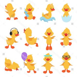 Cartoon Duck Vector: Stock Illustration Duck On A White Background