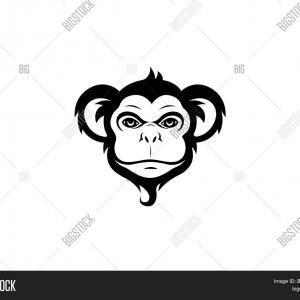 Monkey Face Vector: Cute Monkey Face Image