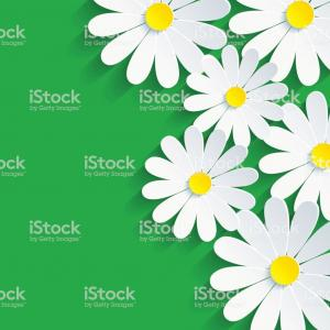 Vector 3D Flower: D Flower Chamomile Spring Background Abstract Gm