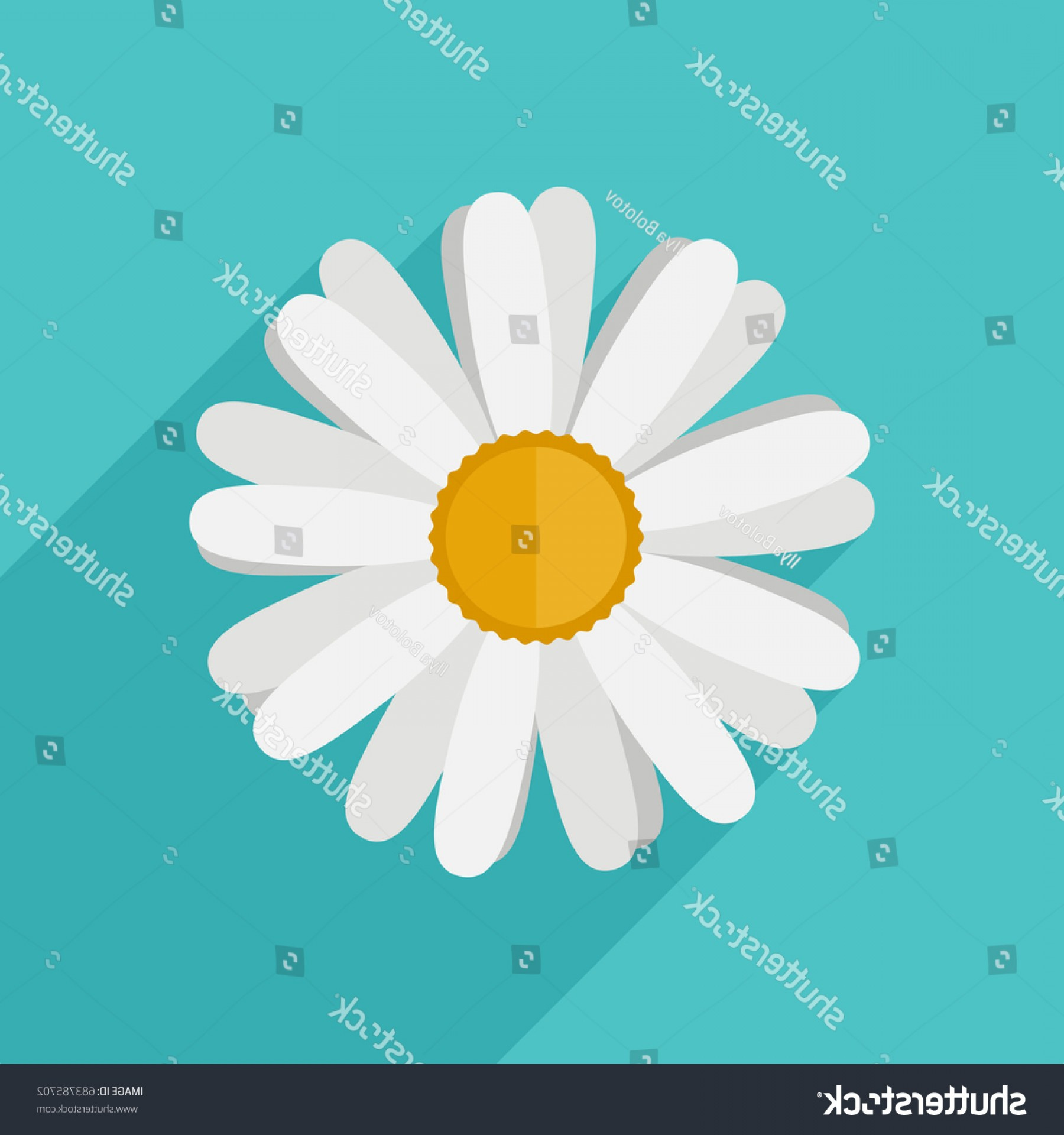 Simple Vector Daisy: Daisy Flower Flat Style Vector Simple