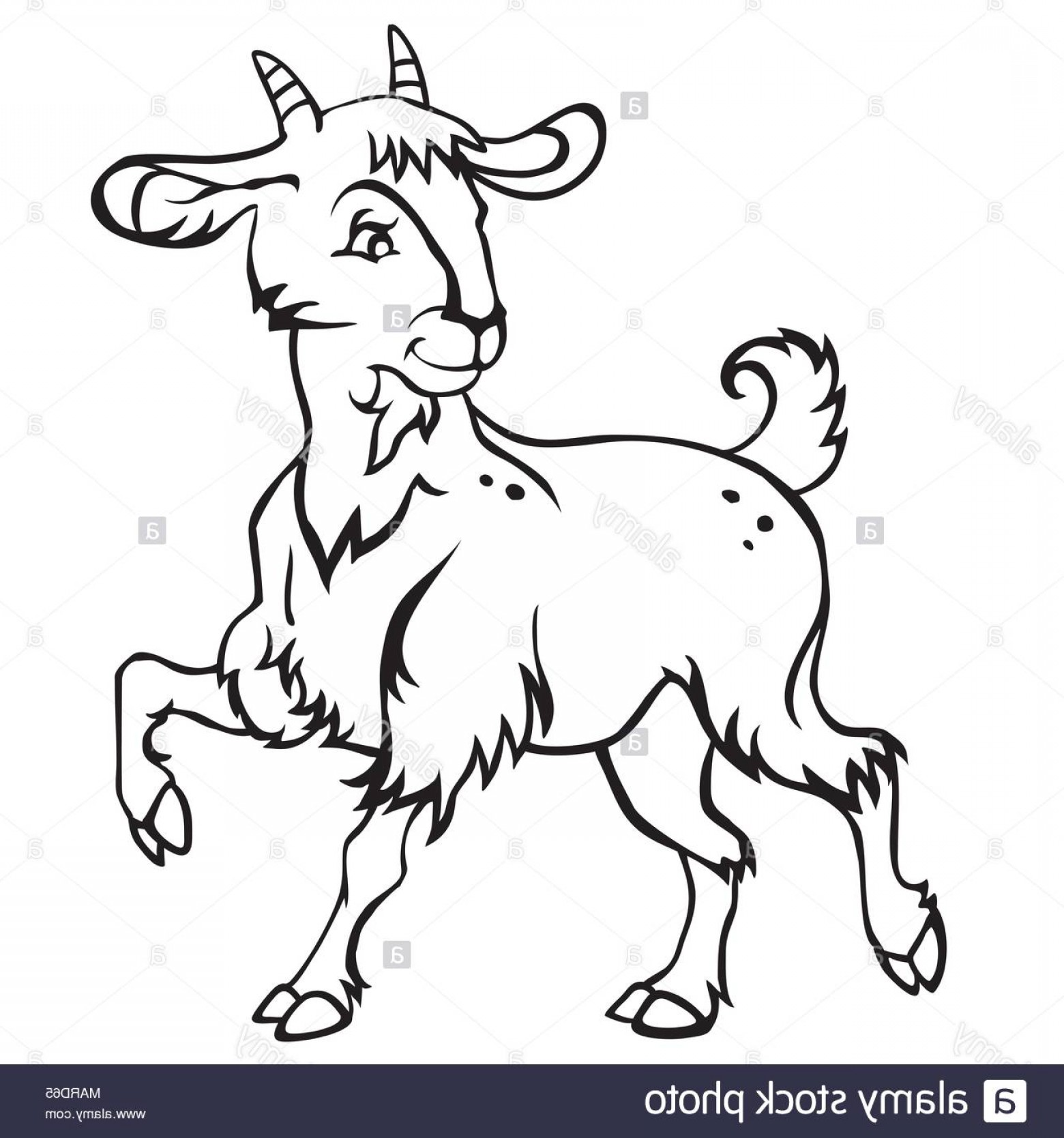 Funny Black And White Vector: Decorative Standing Funny Cartoon Goat Kid Monochrome Vector Illustration In Black Color Isolated On White Background Image