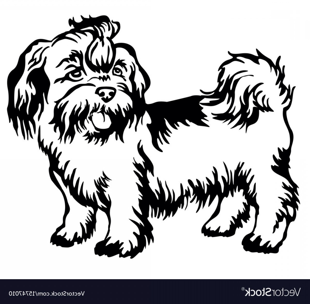 Shih Tzu Vector Siluete: Decorative Standing Portrait Of Dog Shih Tzu Vector