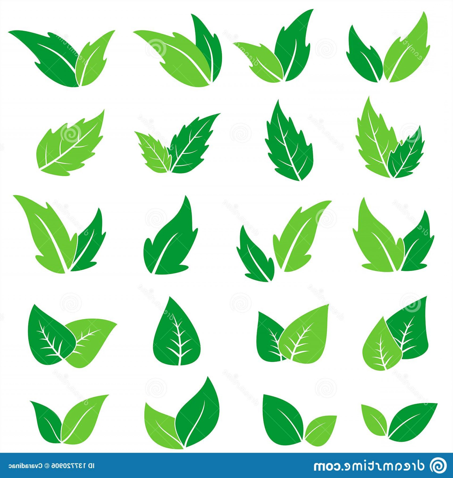 Vector Leaf Graphicd: Design Vector Graphic Natural Leaf Clipart Green Leaf Icons Set Vector Graphic Illustration Image