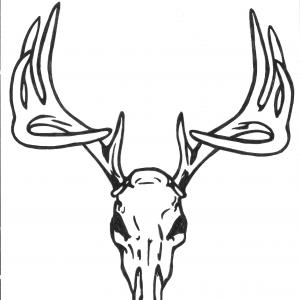 Deer Head Silhouette Vector Clip Art: Deer Head With Big Antlers Black And White Realistic Vector Outline