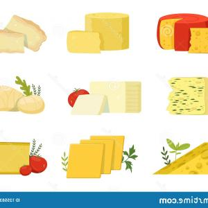 Cheese Vector: Different Types Cheese Pieces Popular Kind Cheese Vector Illustrations Different Types Cheese Pieces Popular Kind Image