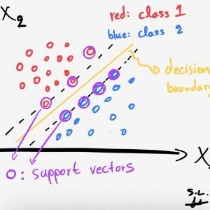 2-Dimensional Vector: Dimensional Vector Valued Modular Forms