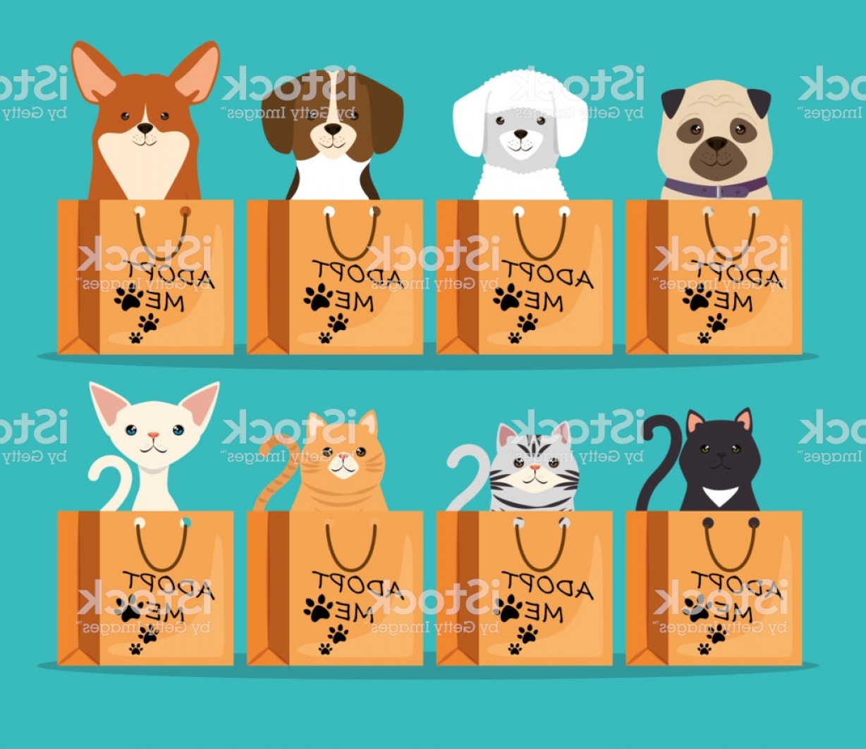 Adoption Art Animal Vector: Dogs And Cats Pets In Adoption Bags Characters Gm