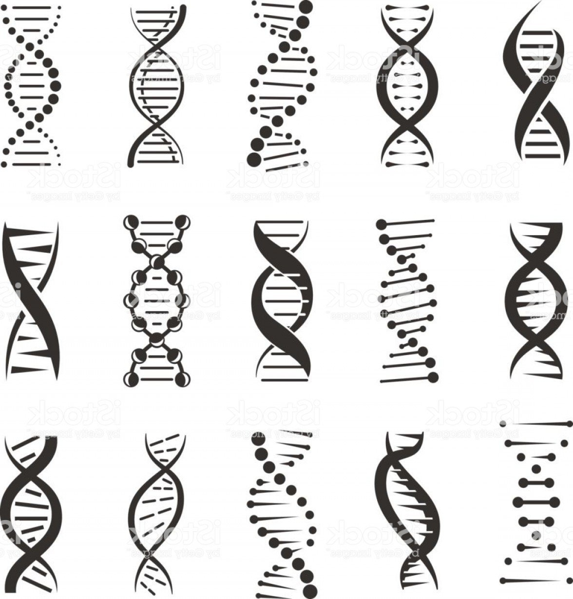 DNA Helix Vector: Double Dna Helix Vector Icons Gm