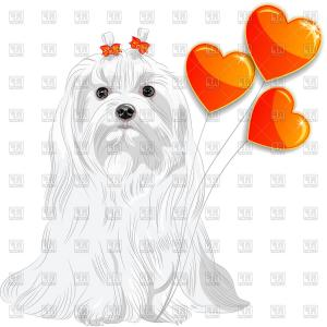 Maltese Vector Logo: Dog Of Maltese Breed With Red Hearts Vector Clipart