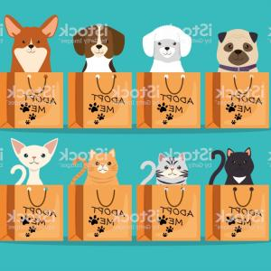 Adoption Art Animal Vector: Photostock Vector Adopt Me Red Heart Cute Cat Dog In The Pocket Holding Hands Paws Cartoon Animals Kitten Kitty Puppy