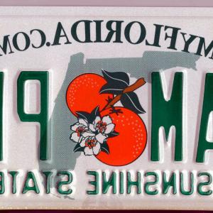 Florida License Plate Vector Art: Dont Hide The Letters On Your Florida License Plate With A Frame