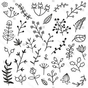 Vector Laurels Hand Drawn Line: Doodle Hand Drawn Line Cute Floral