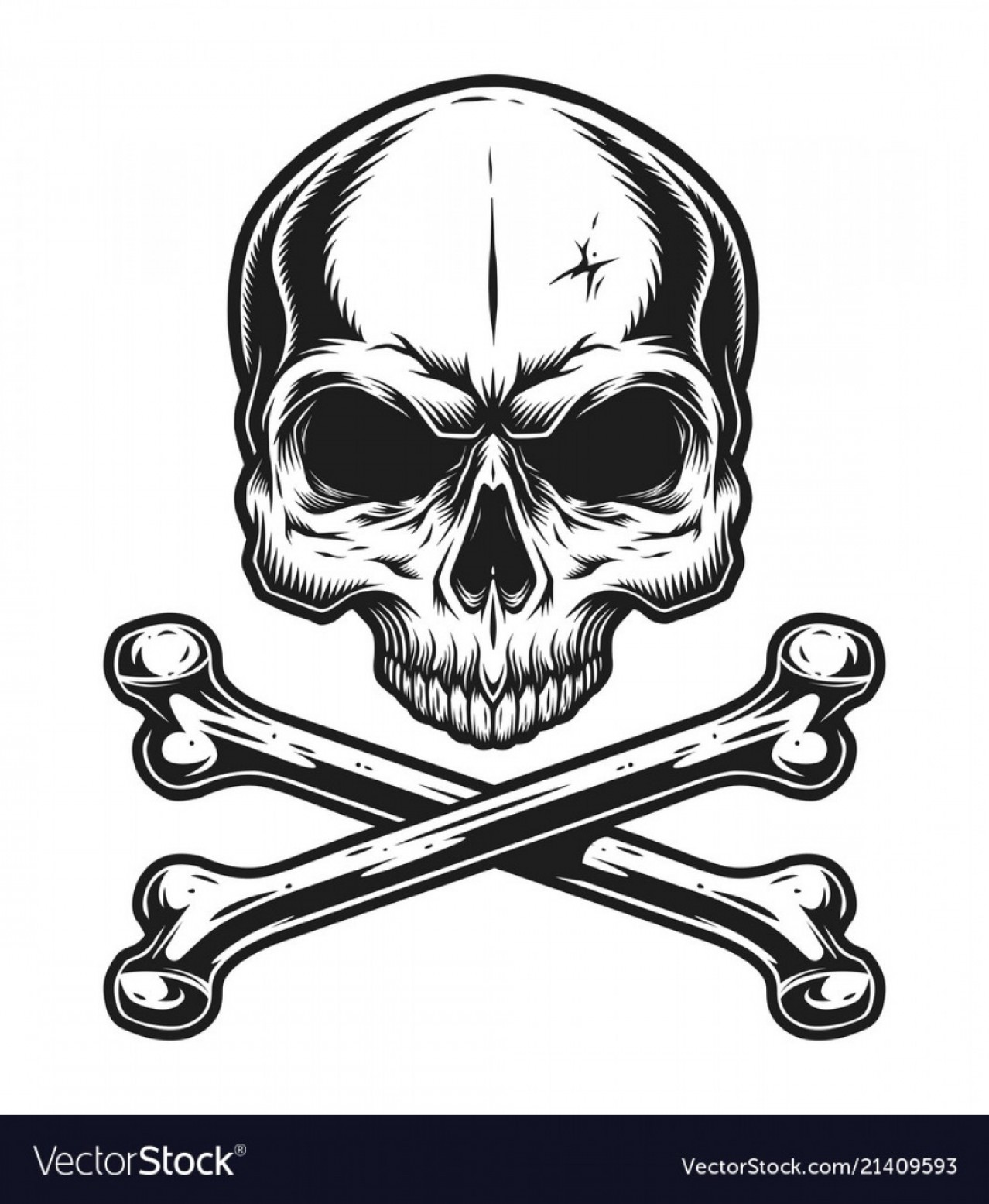Harley -Davidson Skull Logo Vector: Drawing Skull And Crossbones Free Vector Ac