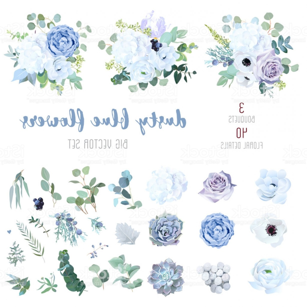 Vector Image Blue Hydrangeas: Dusty Blue Pale Purple Rose White Hydrangea Ranunculus Gm