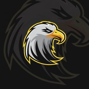 Sports Logos Vector Art: Eagle E Sport Logo Vector