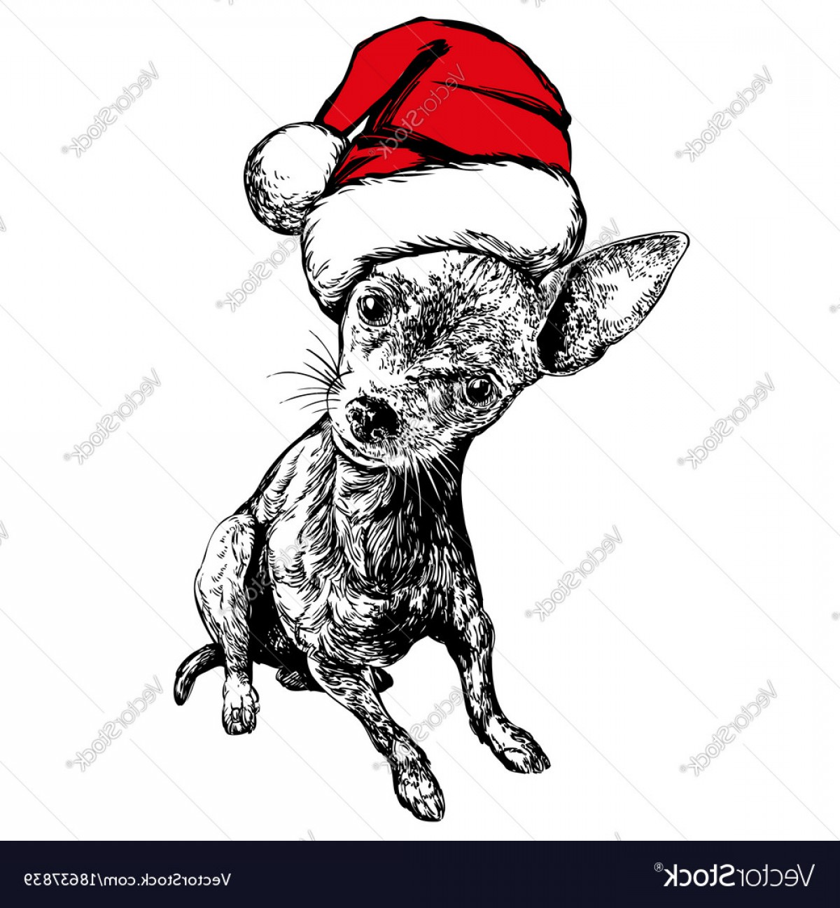Stocking Hat Vector: Elegant Dog In Santa Stocking Hat Santa Claus Christmas Vector