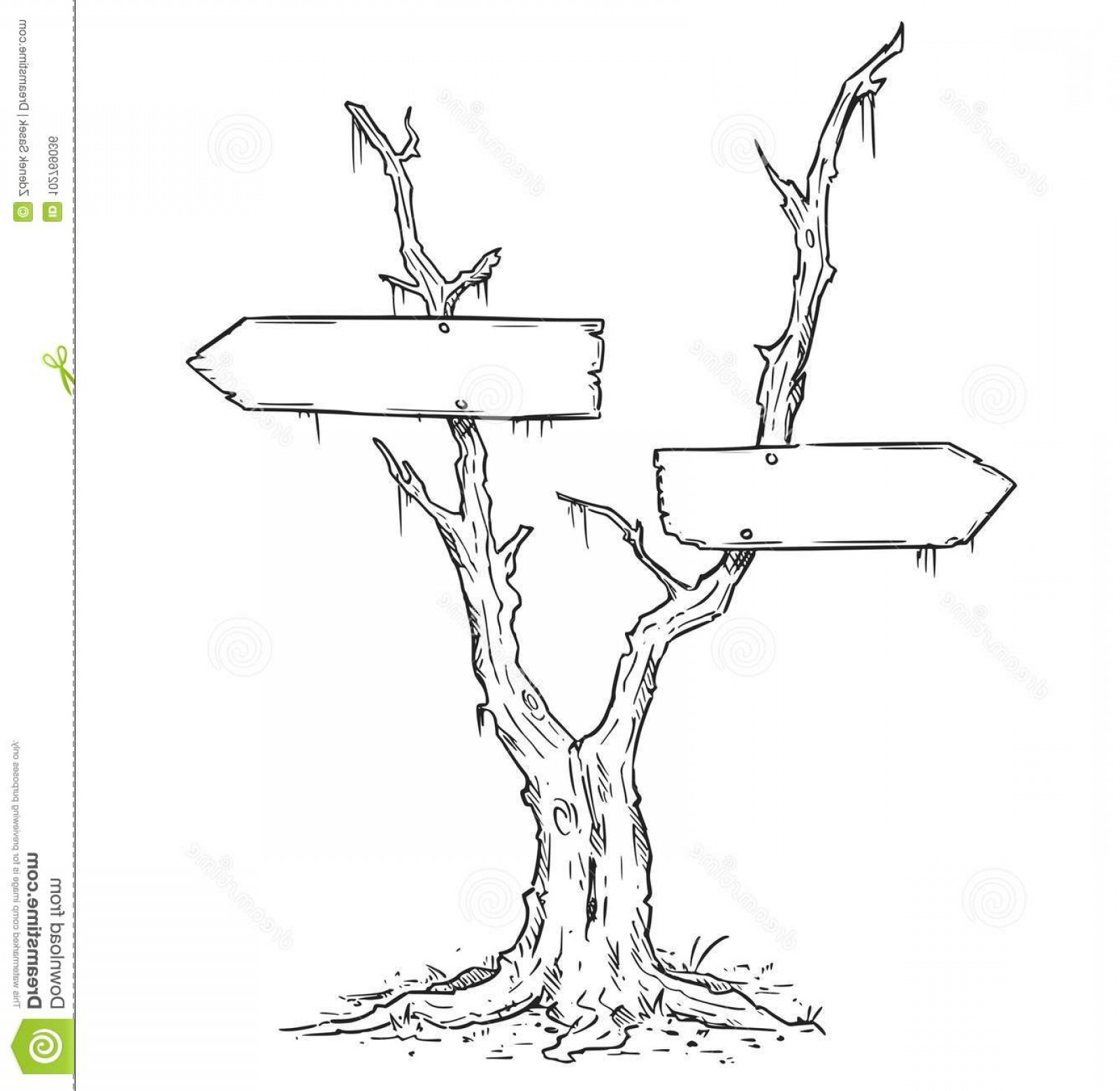 Swamp Vector Art: Empty Blank Arrow Sign Dead Swamp Tree Vector Drawing Decision Signs Image
