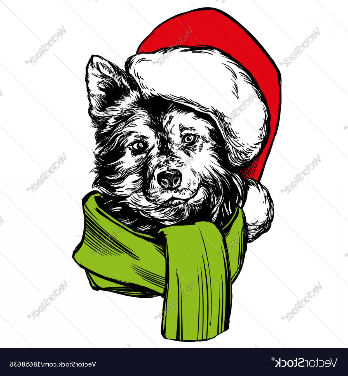 Stocking Hat Vector: Exclusive Dog In Santa Stocking Hat Santa Claus Christmas Vector