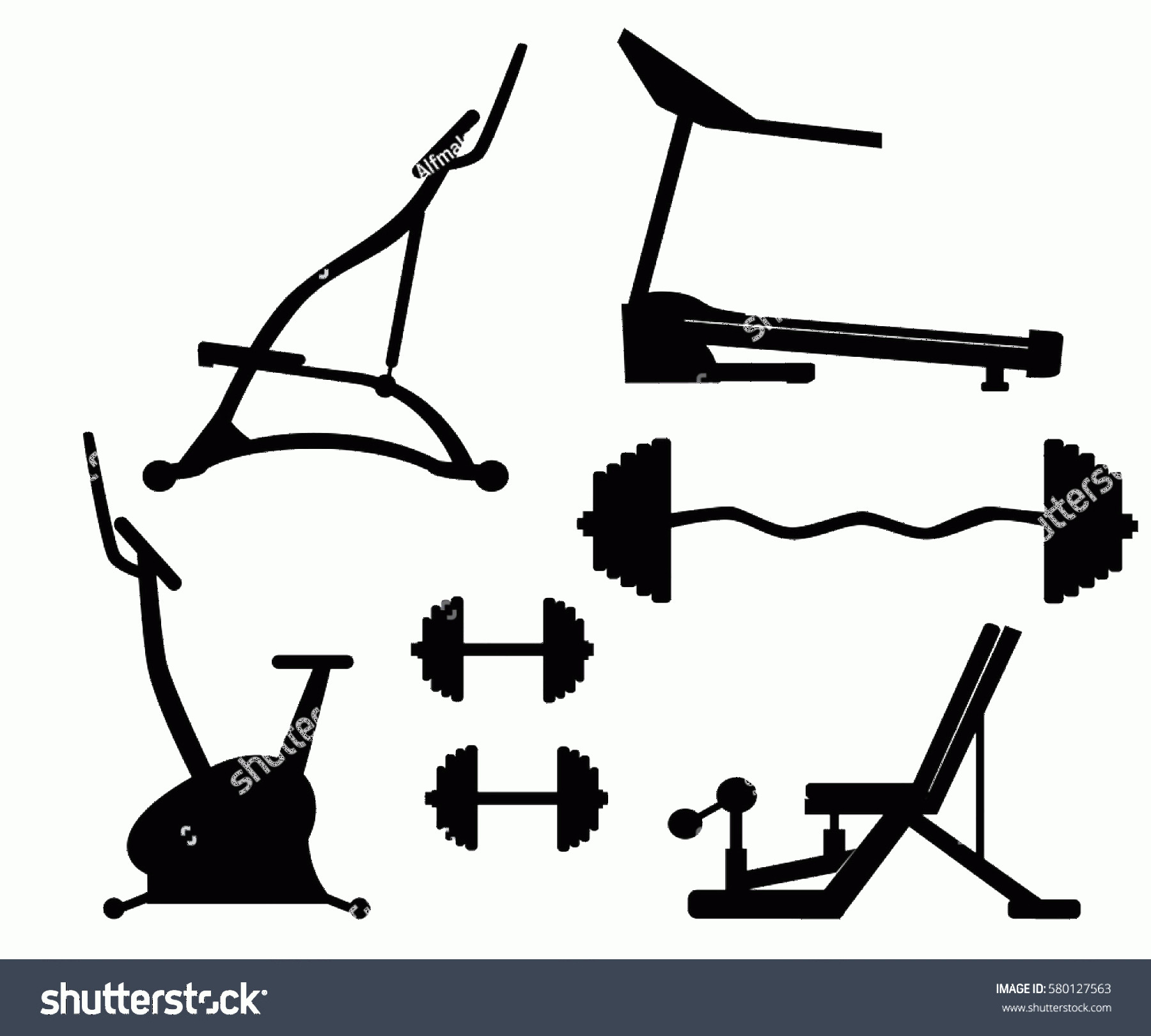 Vector Gym Equipment: Exercise Machine Gym Equipment Workout Machines