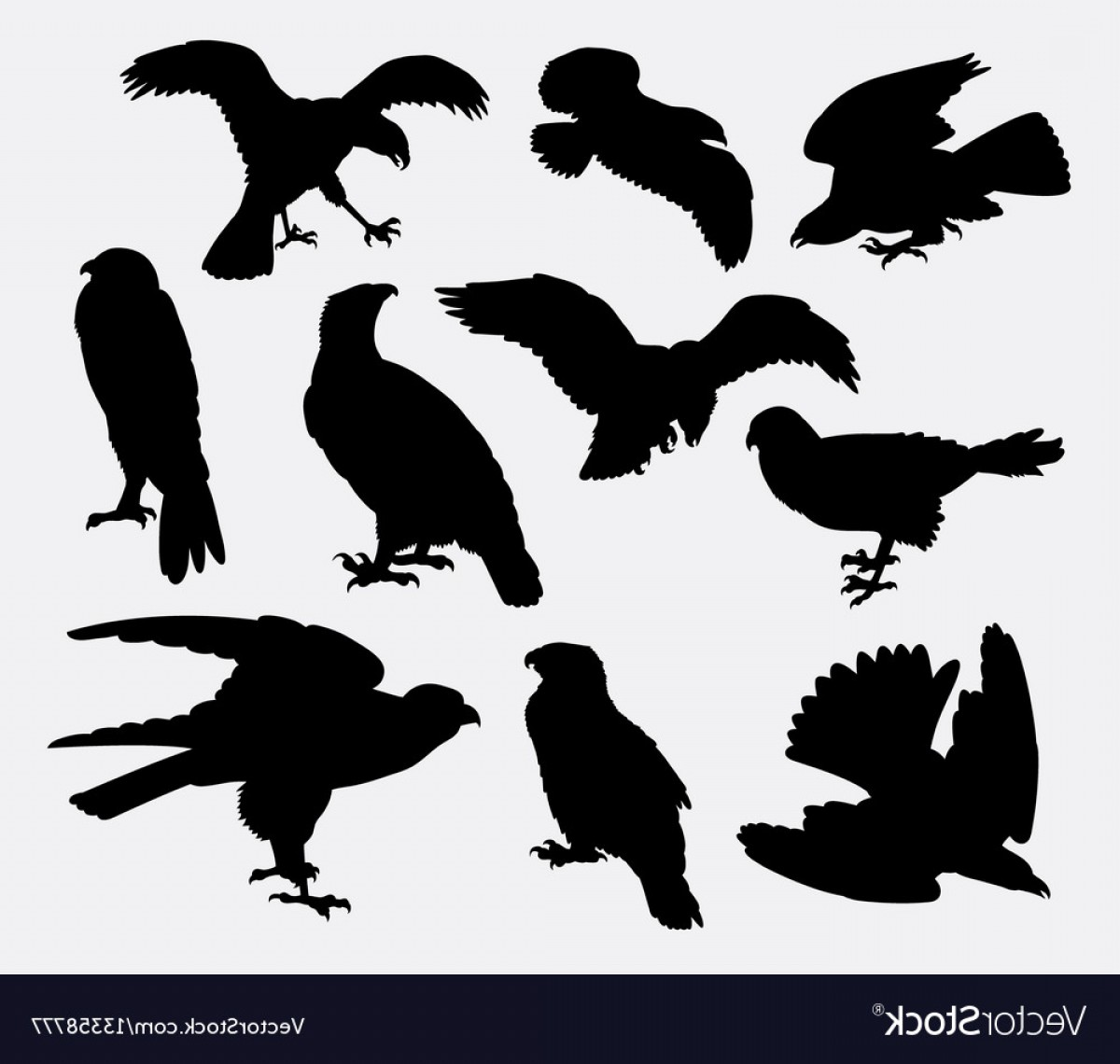 Falcon Silhouette Vector: Falcon Eagle And Hawk Bird Silhouette Vector