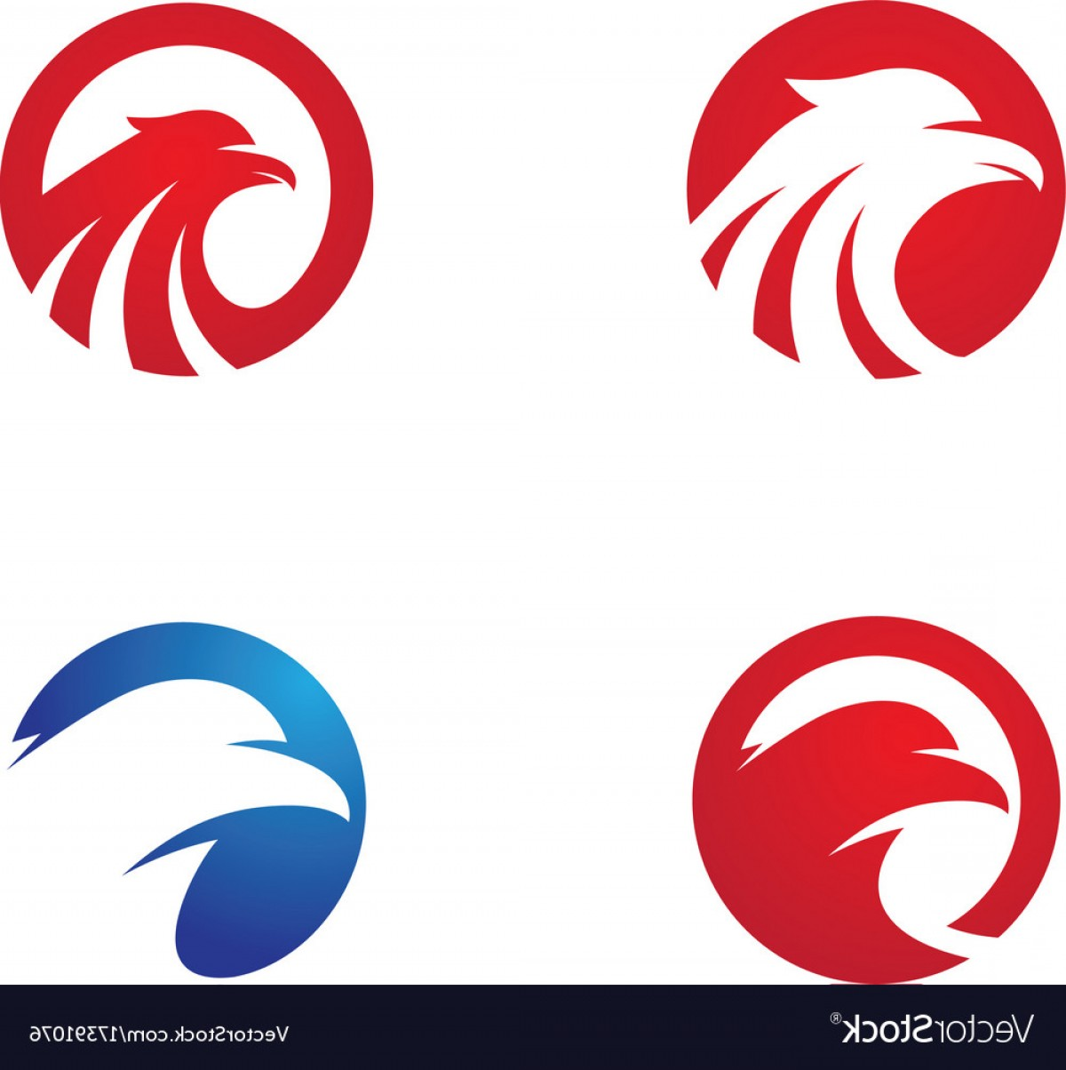 Falcon Wing Vector Art: Falcon Wing Logo Template Vector