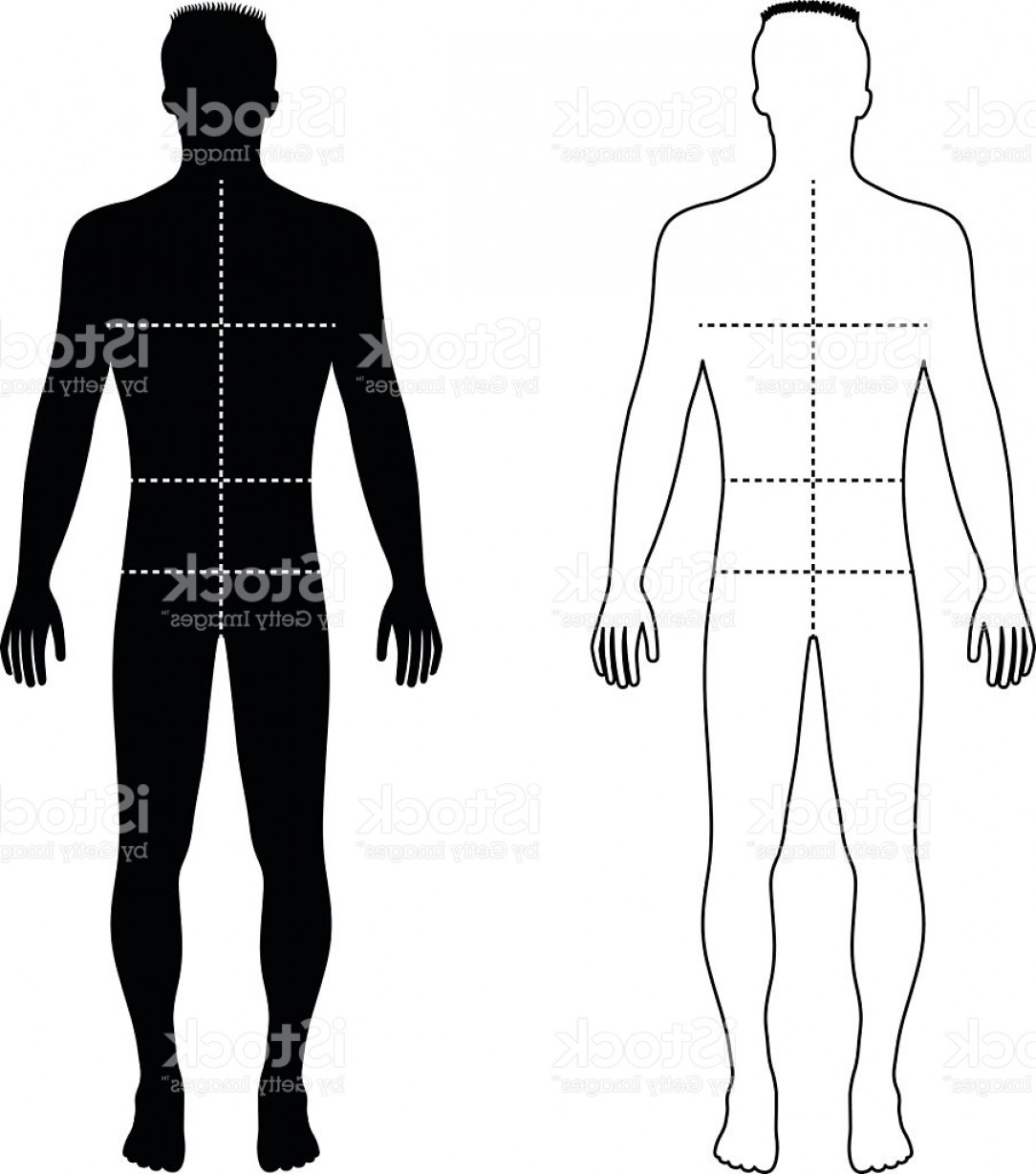 Male Silhouette Vector Art: Fashion Man Outlined Template Figure Silhouette With Marked Body Gm