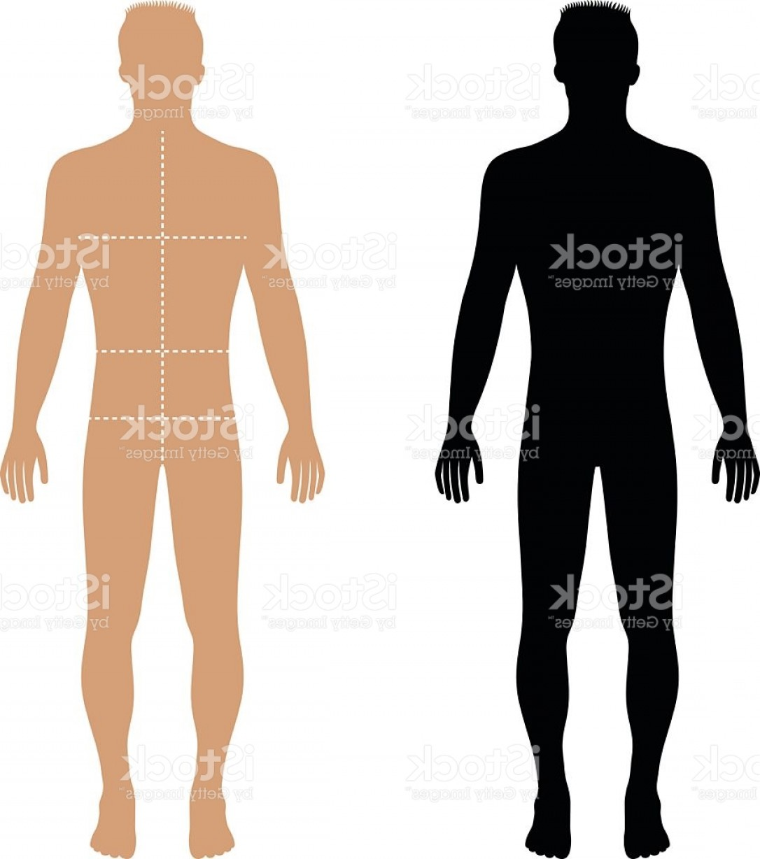 Male Silhouette Vector Art: Fashion Man Solid Template Figure Silhouette With Marked Bodys Gm