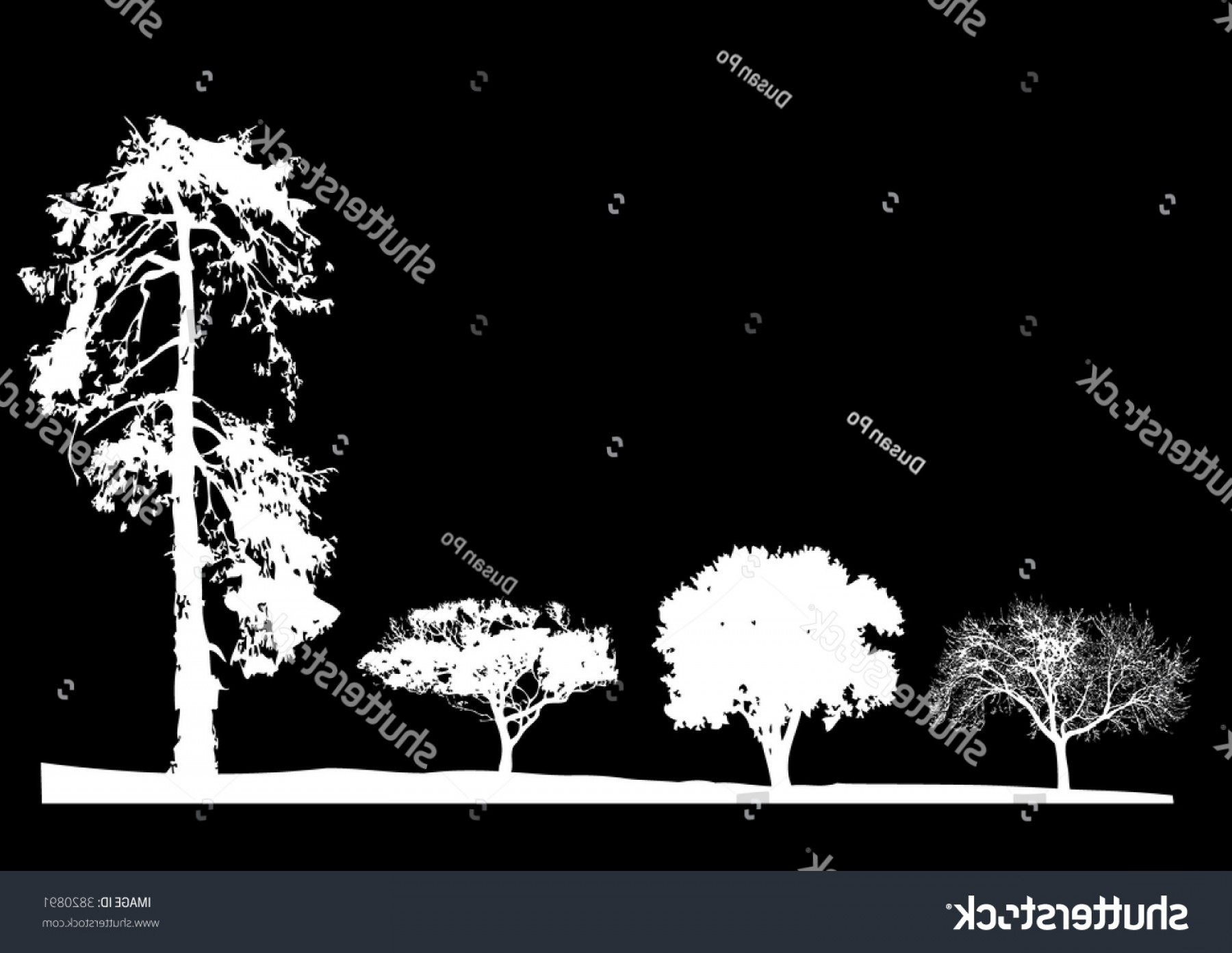 Black And White Negative Vector: Few Silhouette Tree Row Negative Vector