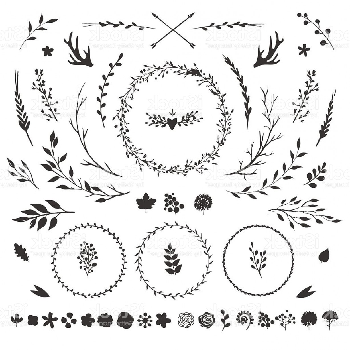 Flower Elements Vector: Floral Elements Isolated On White Gm