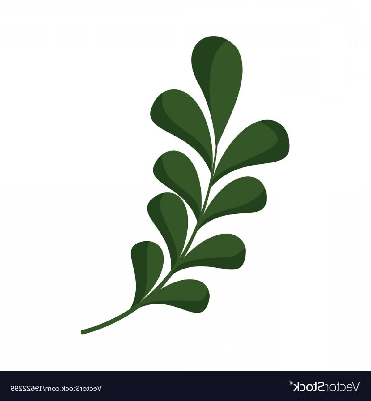 Vector Leaf Graphicd: Floral Leaves Ornament Graphic Vector