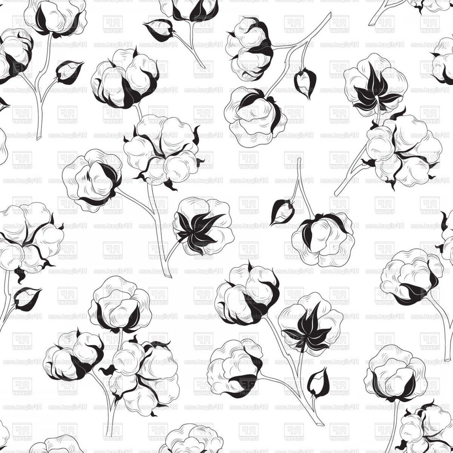 Cotton Vector Graphic: Floral Seamless Pattern With Flower Cotton Vector Clipart