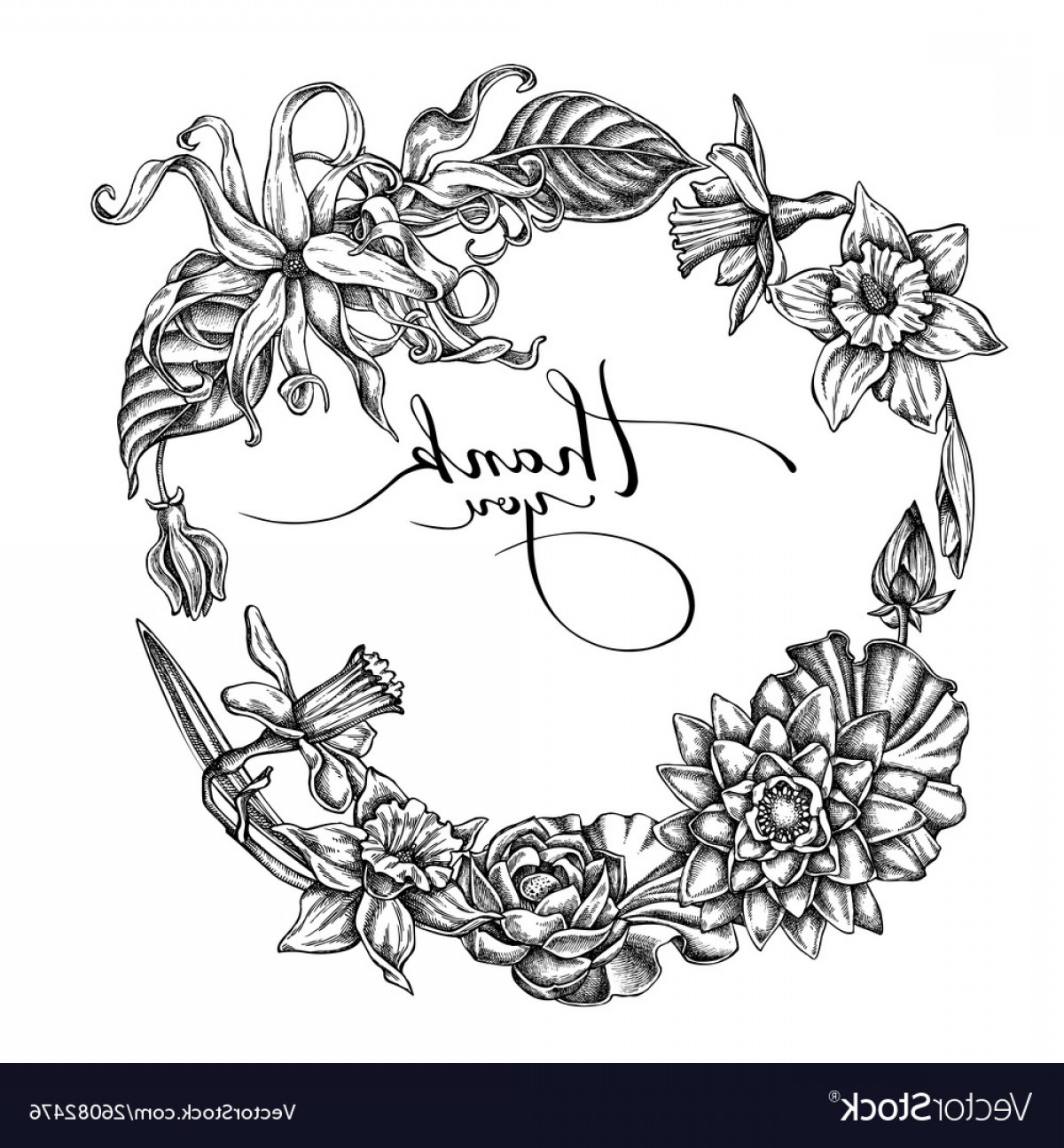 Vector Flower Wreaths In Black: Floral Wreath Black And White Ylang Ylang Vector
