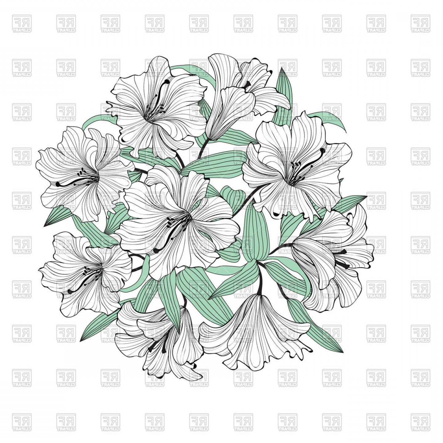 Lily Vector Art: Flower Lily Bouquet Isolated Vector Clipart