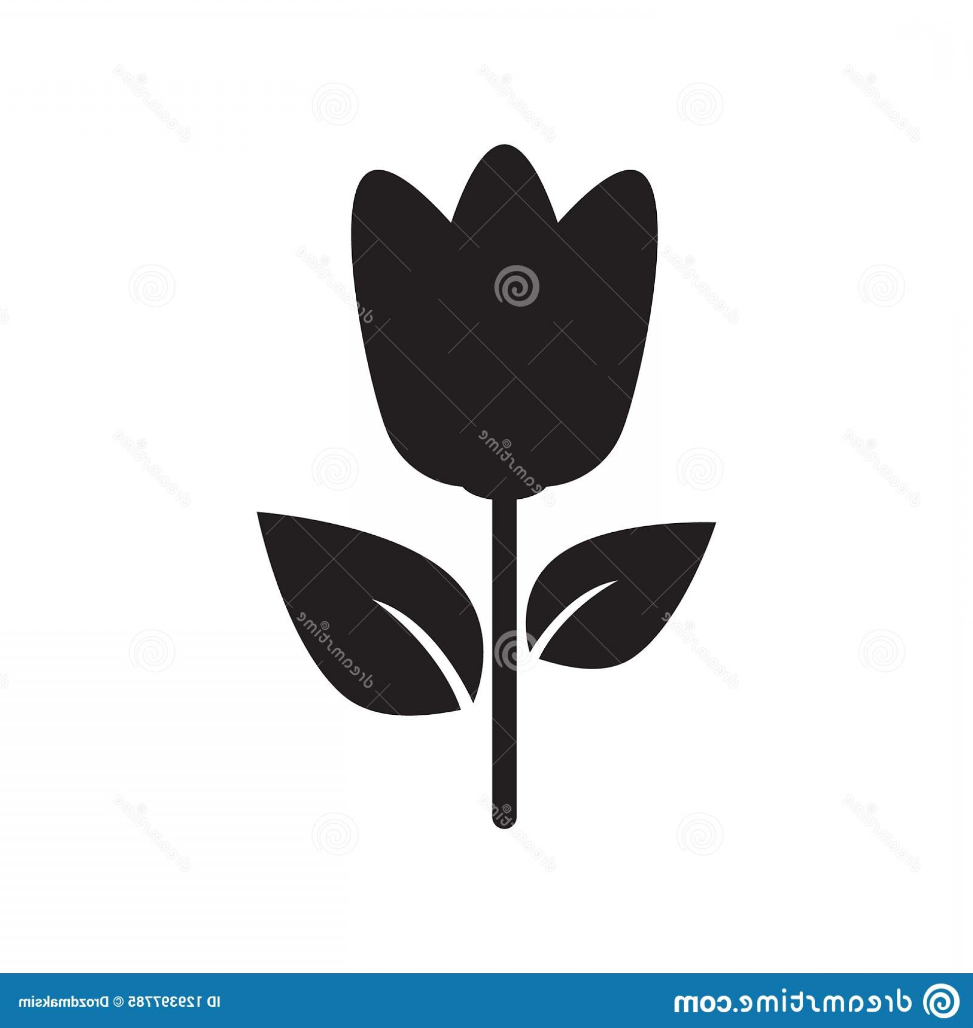 Tulip Icon Vector: Flower Vector Icon Tulip Illustration White Background Image
