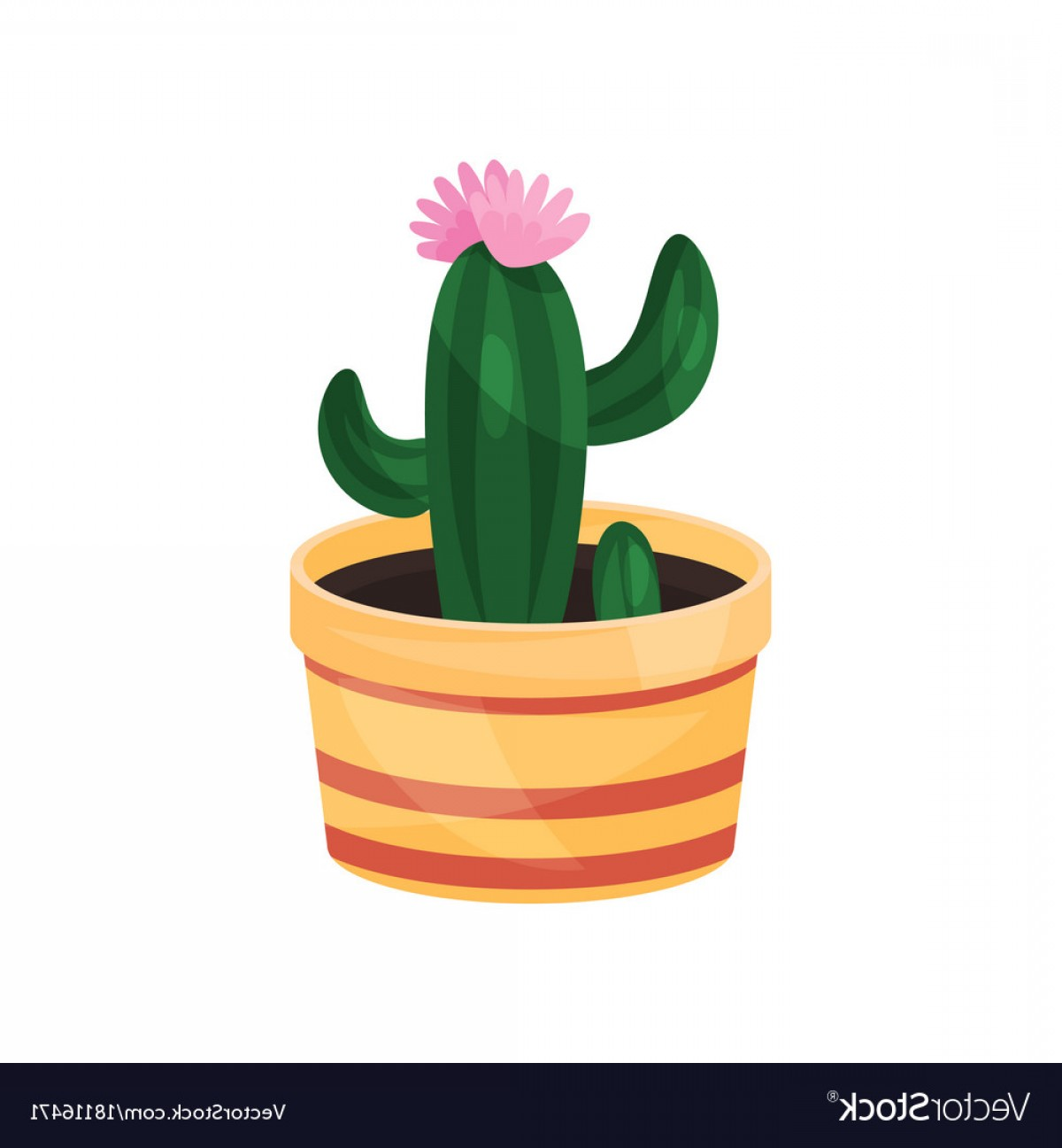 Potted Cactus Plant Vector: Flowering Cactus Green Potted Plant Vector