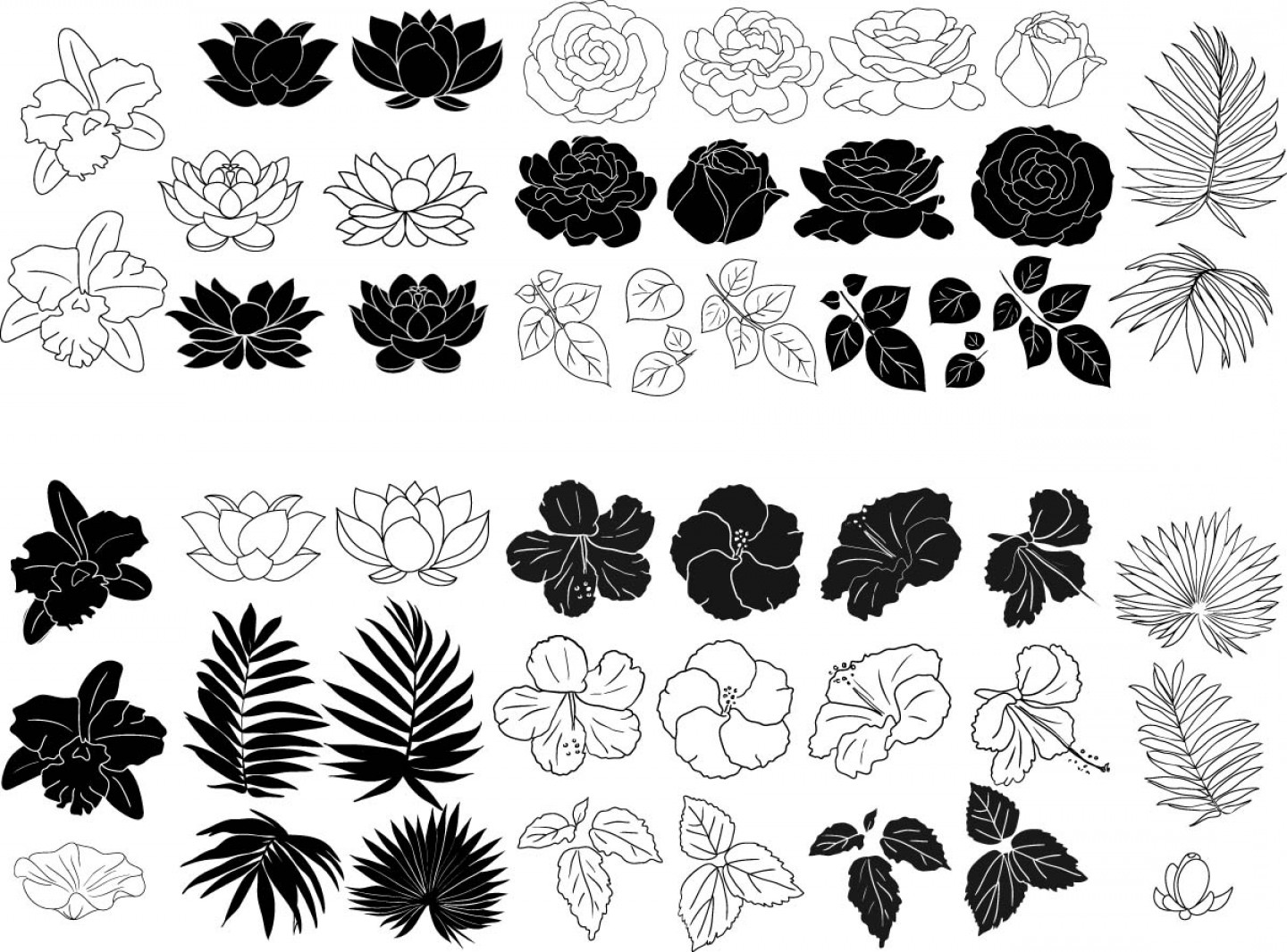 Flower Elements Vector: Flowers And Leaves Elements Vector Set