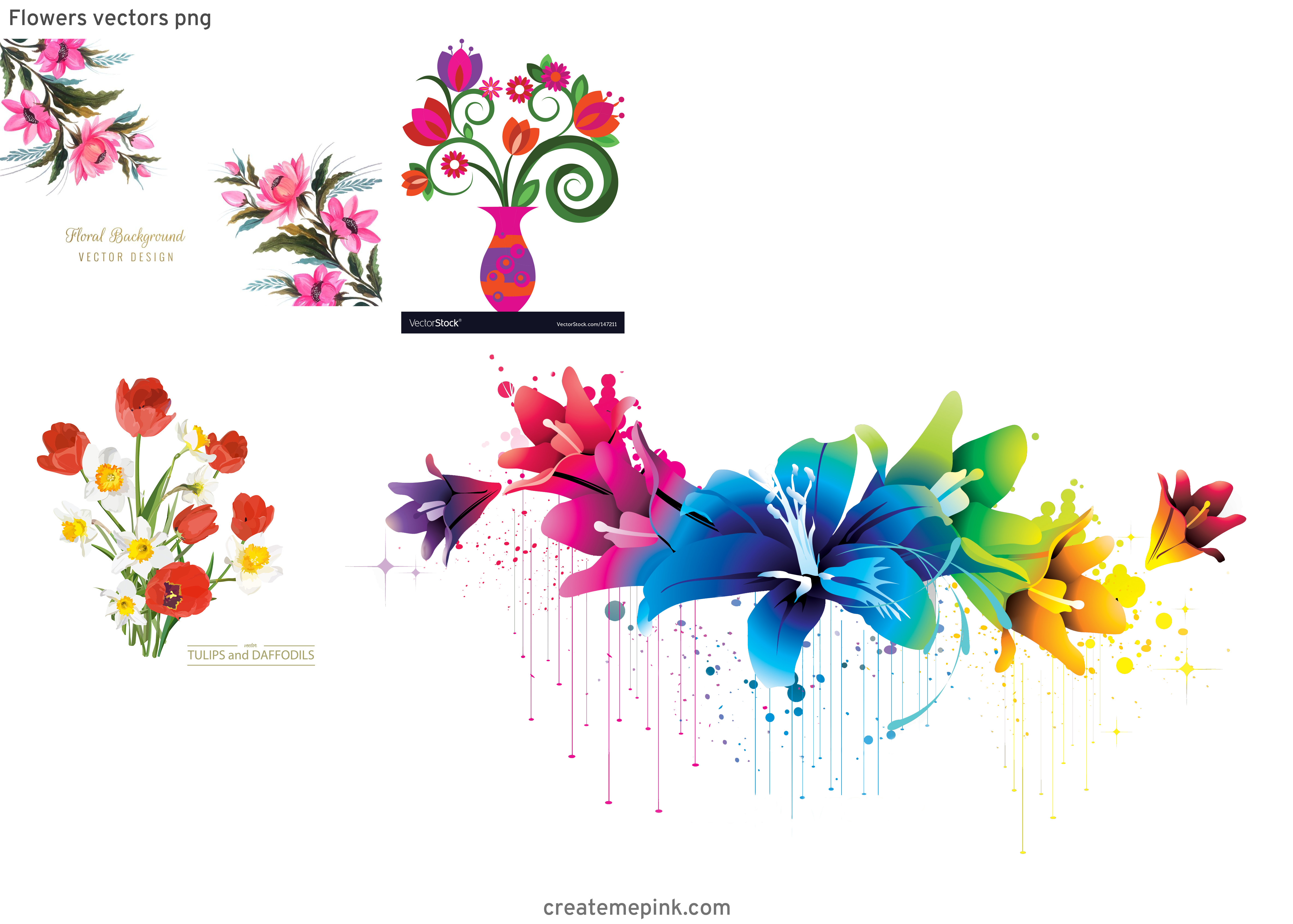 Vector Graphics Floral: Flowers Vectors Png
