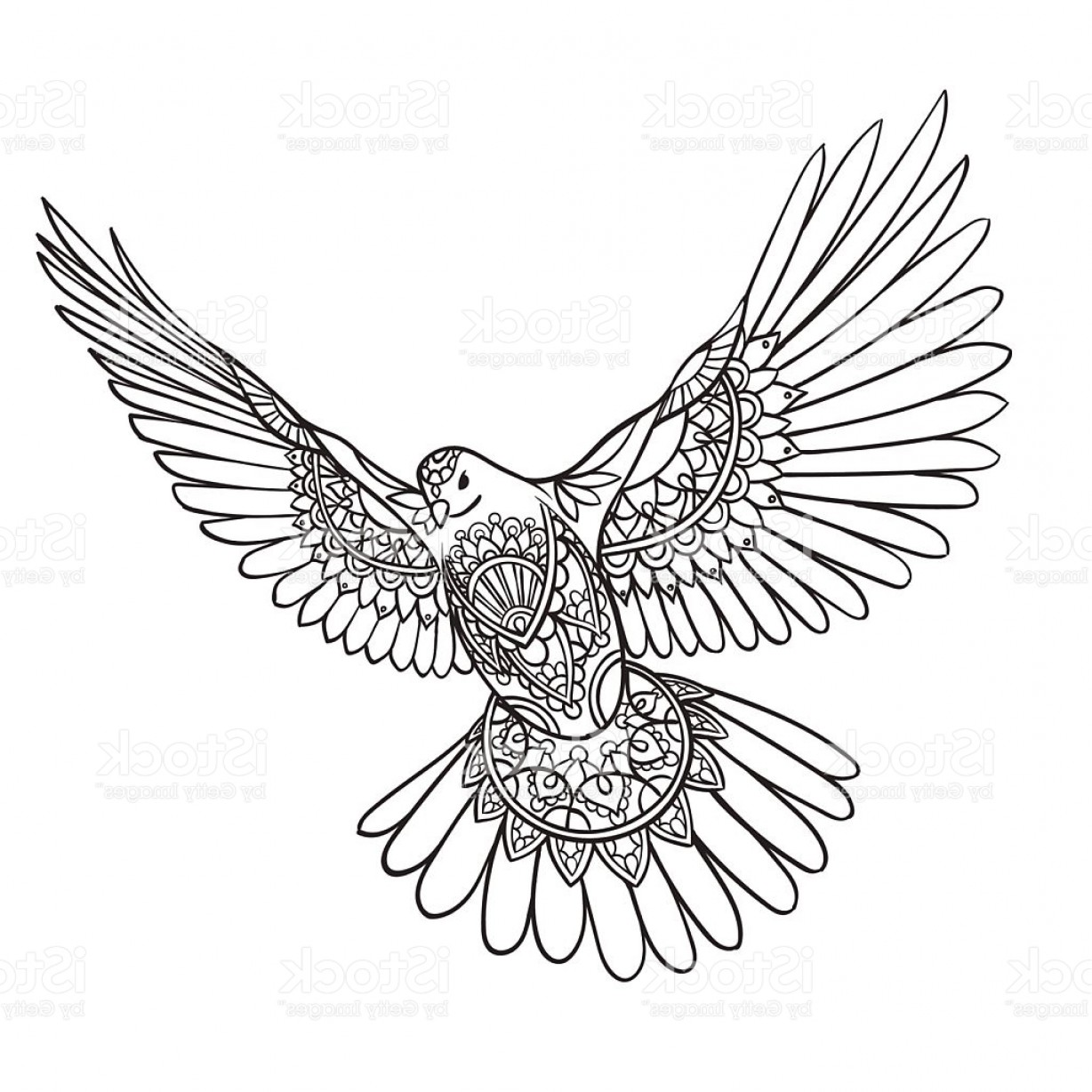 Falcon Wing Vector Art: Flying Dove With Spread Wings In Ethnic Patterns Gm