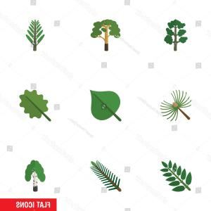 Vector Natural Willow: Flat Icon Natural Set Timber Alder