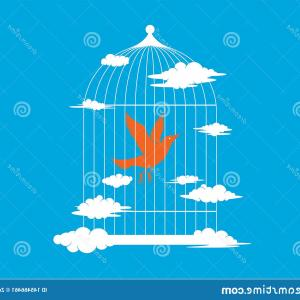 Teal Bird Cage Free Vector: Flying Bird Bird Cage Blue Sky Background Birdcage Image
