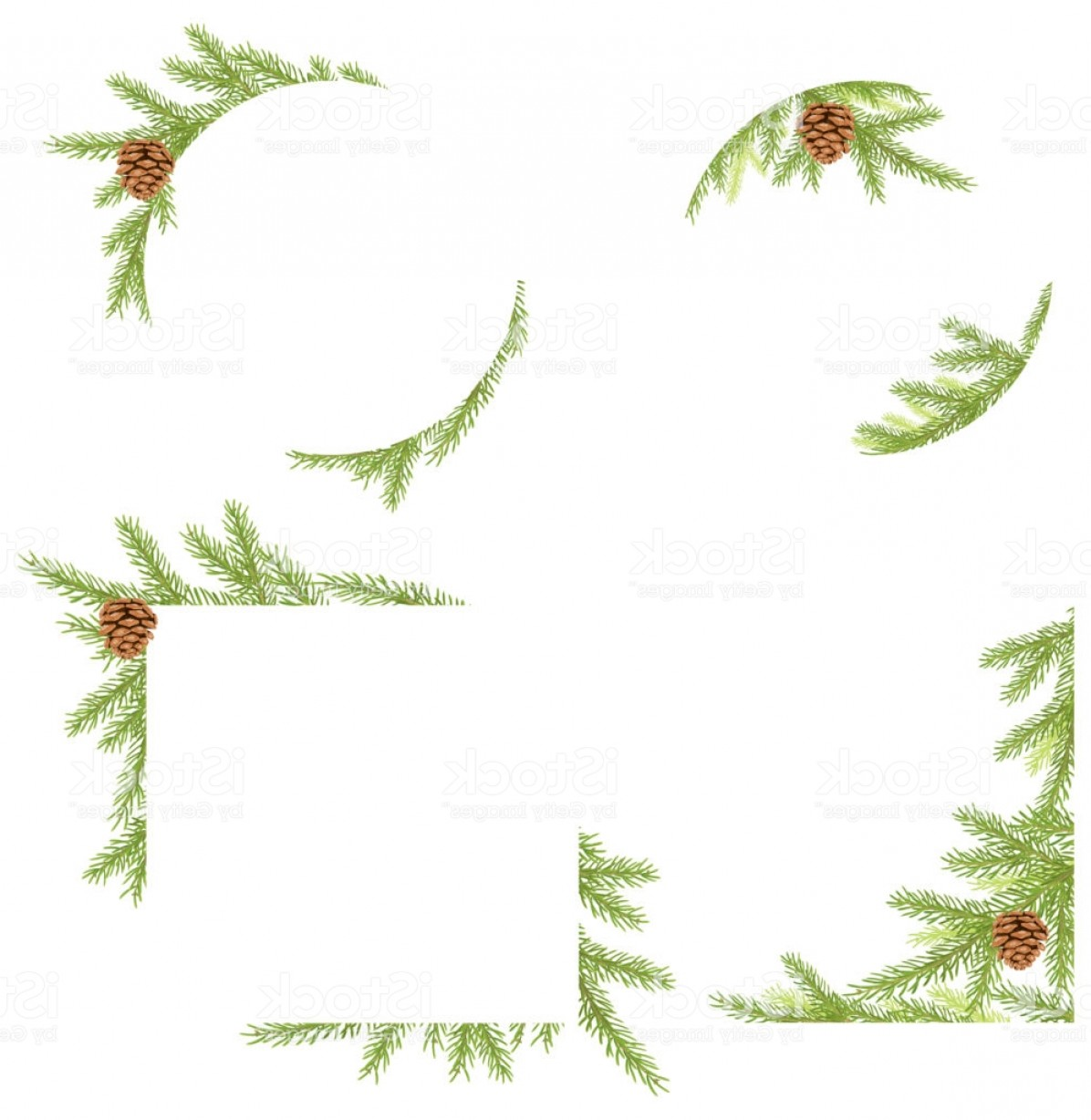 Pine Leaves Vector: Frame With Pine Tree Leaves Gm