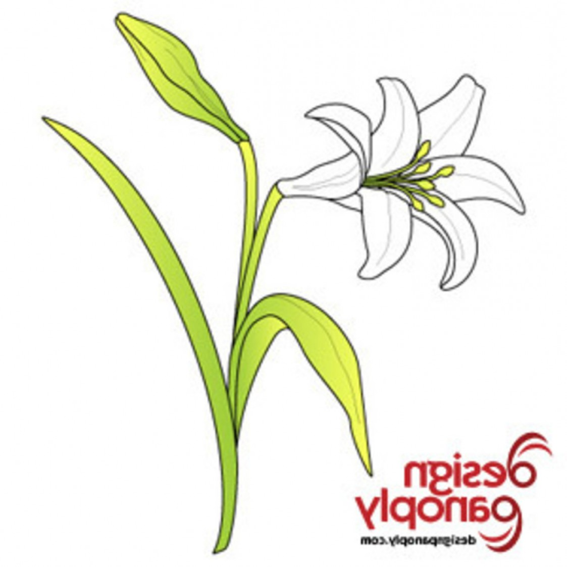 Lily Vector Art: Free Easter Lily Vector Flower