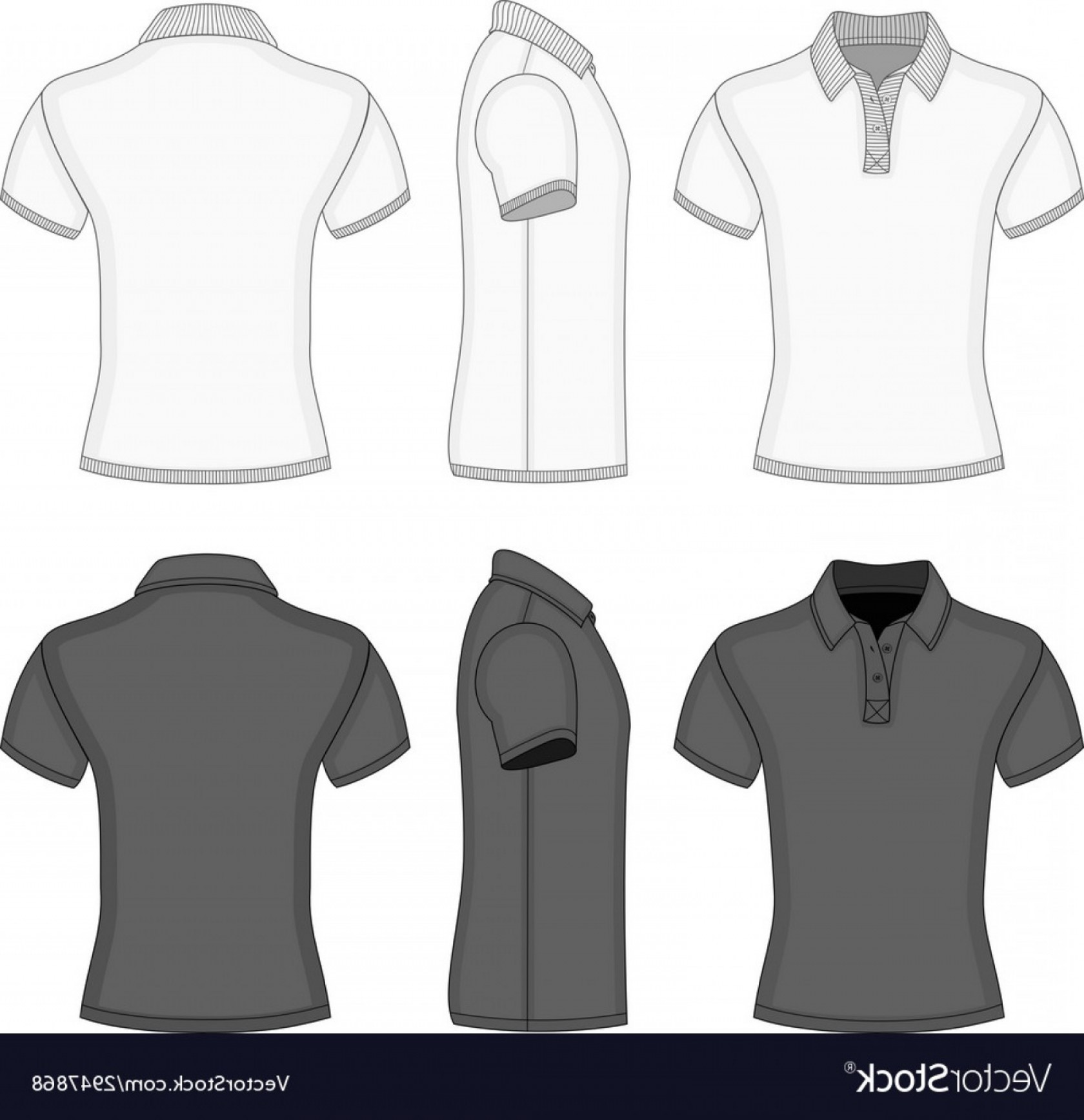 Female Polo Shirt Vector Template: Free T Shirt Design Template Mens Polo And Templates Vector