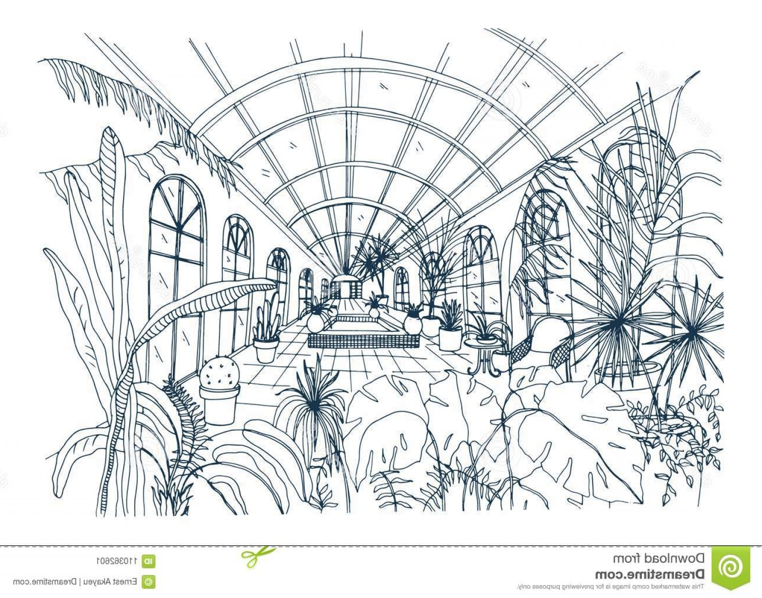 Black And White Vector Greenhouse: Freehand Drawing Interior Greenhouse Full Tropical Plants Monochrome Sketch Glasshouse Exotic Trees Freehand Image