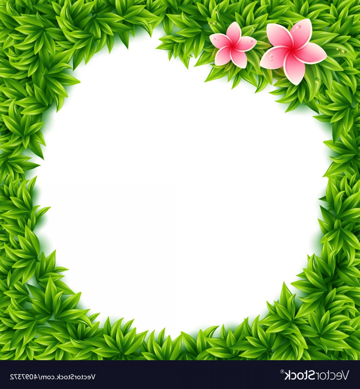 Green Flower Vector Designs: Fresh Green Leaves And Tropical Flowers Frame Vector